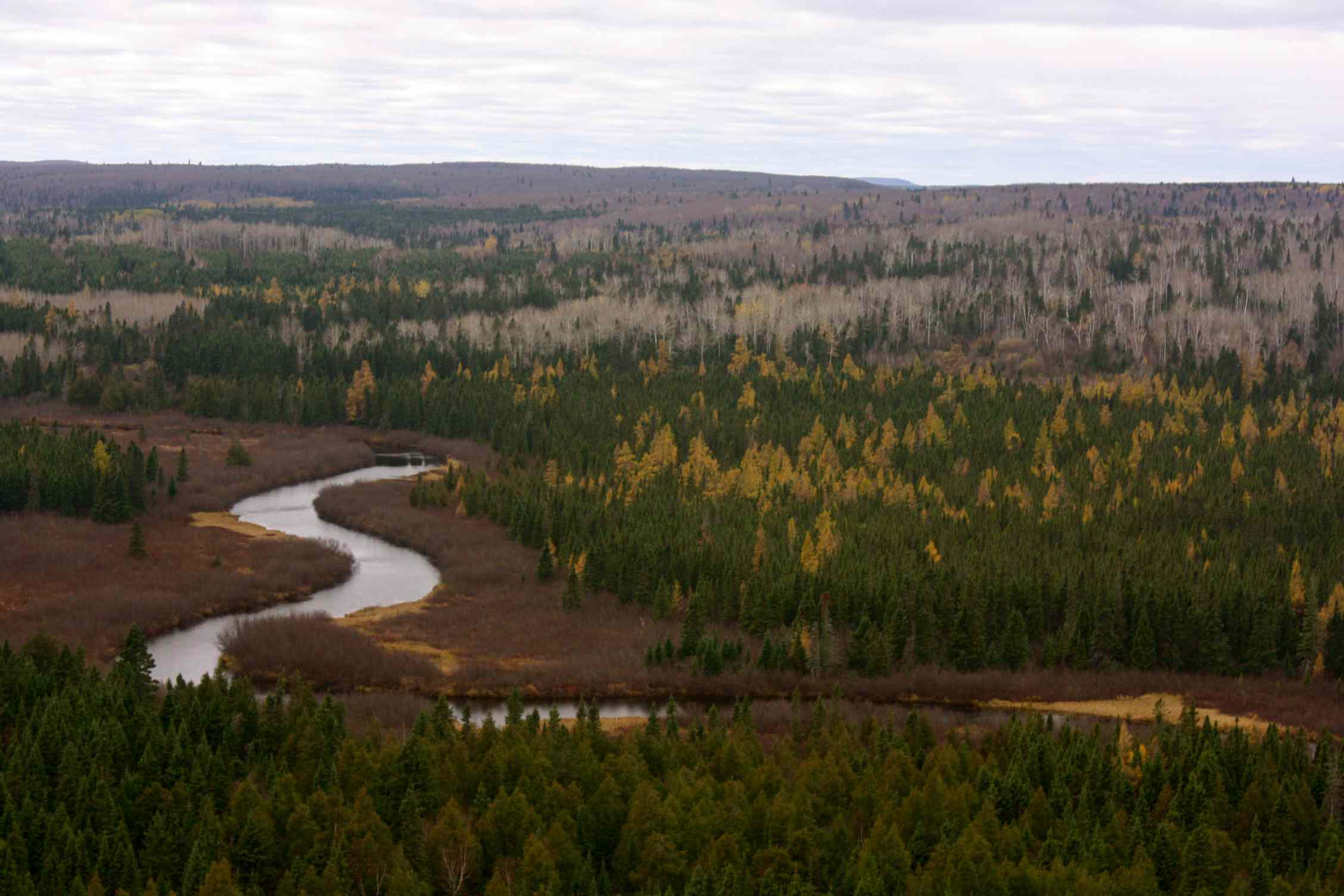 View from the trail of forest and river during fall