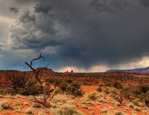 hot rain photo.