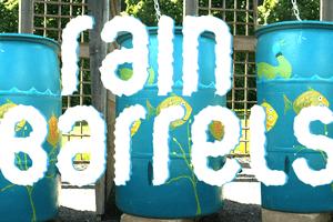 graphic for rain DIY homemade rain barrels