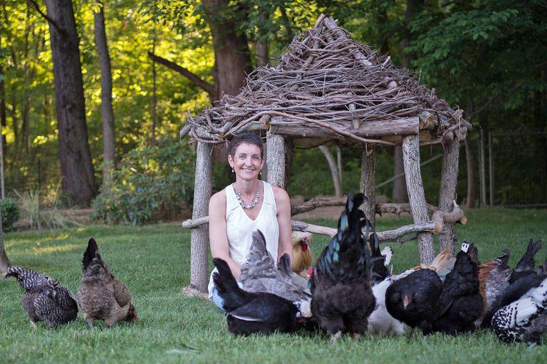 Por qué este experto en aves de corral tiene una creciente bandada de fanáticos en Facebook