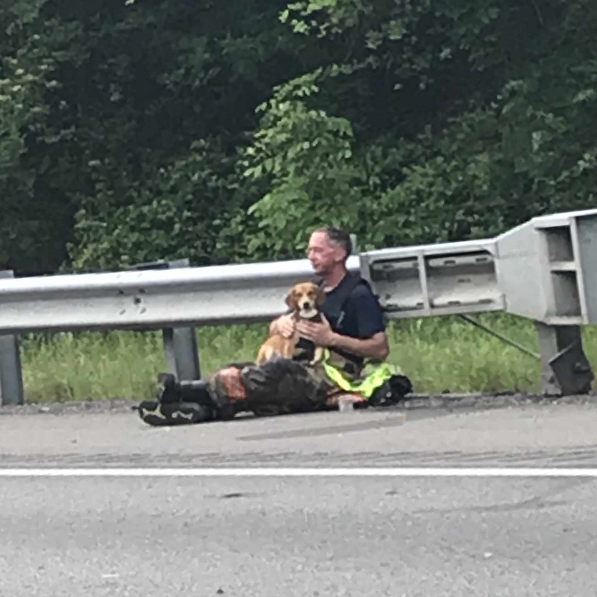 Kentucky fire marshal Bill Compton comforting Lucky the dog on road after accident