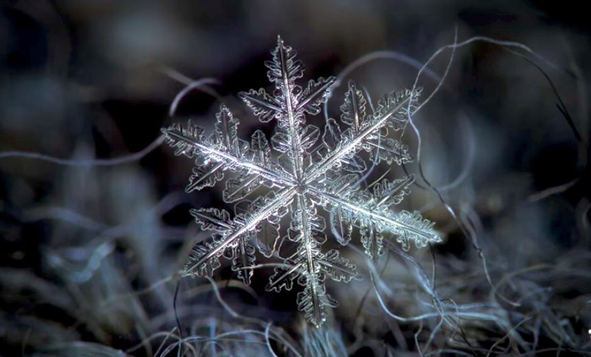 This Is How Snowflakes Are Born (Video)