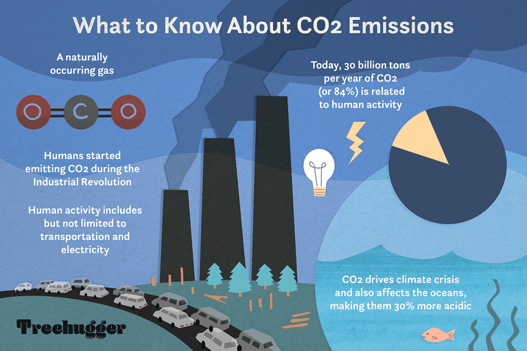 color illustration of chart showing how CO2 emissions affect climate crisis