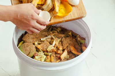 kitchen compost