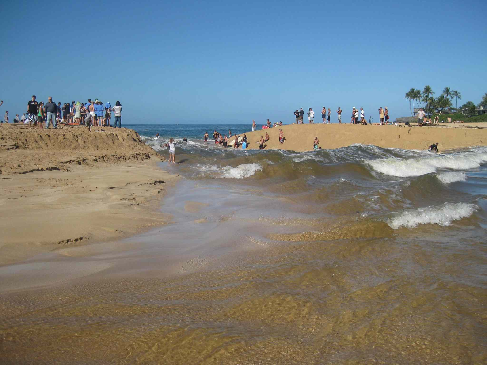 Waves breaking through the mouth of the Waimea River with sand dunes on both sides of the waves packed with observers watching a few surfers in the water under a bright blue sky
