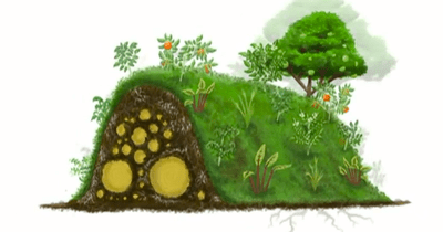 Hugelkultur raised beds illustration