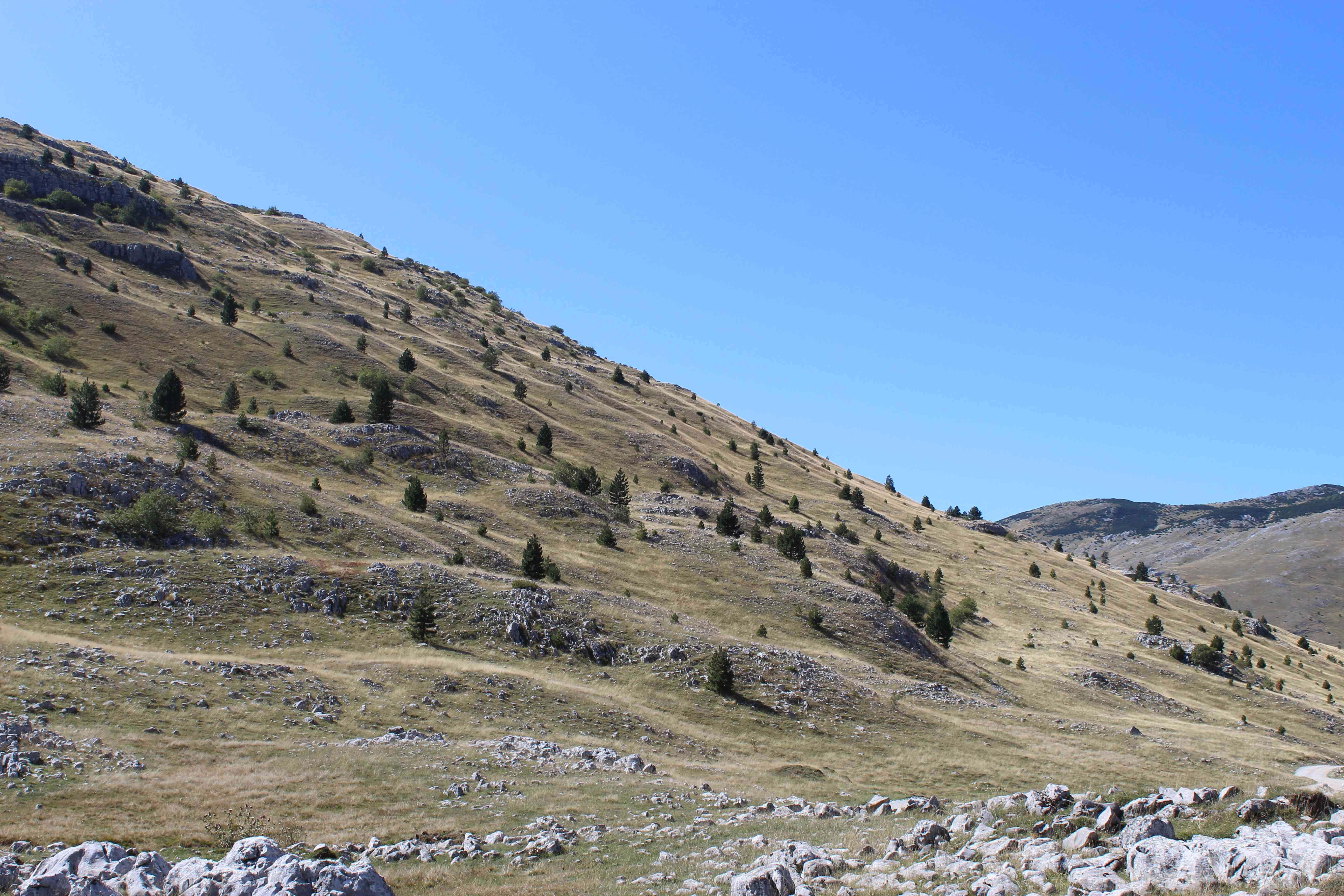 Wavy, hilly, rocky landscape of the Bosnian mountain Bjelasnica.