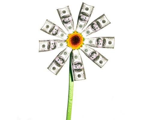 A flower made of hundred dollar bills