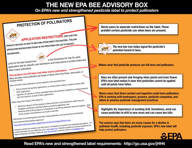 EPA's new regulations to protect pollinators from commercial pesticides