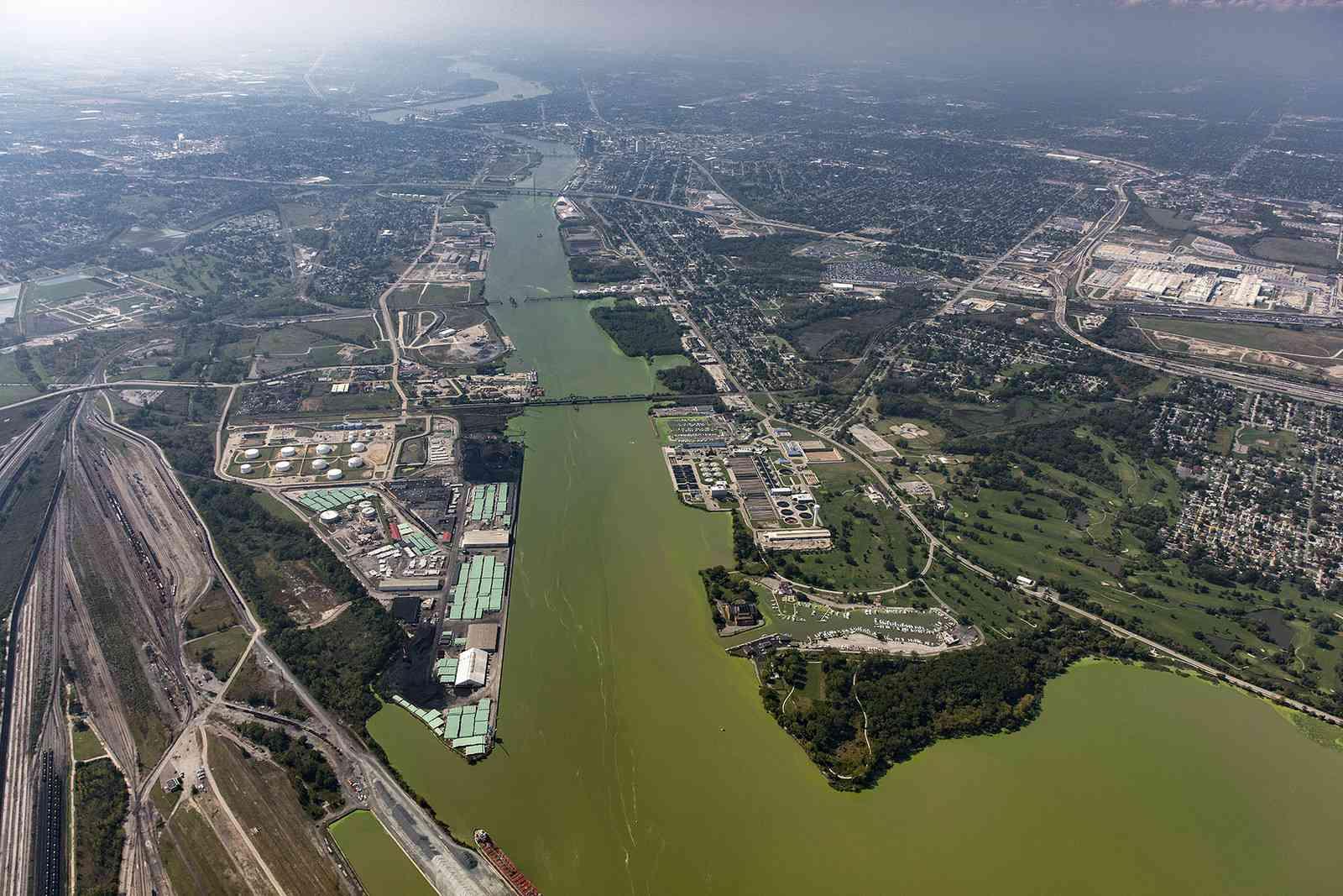 Algal bloom Maumee River, Toledo, Ohio