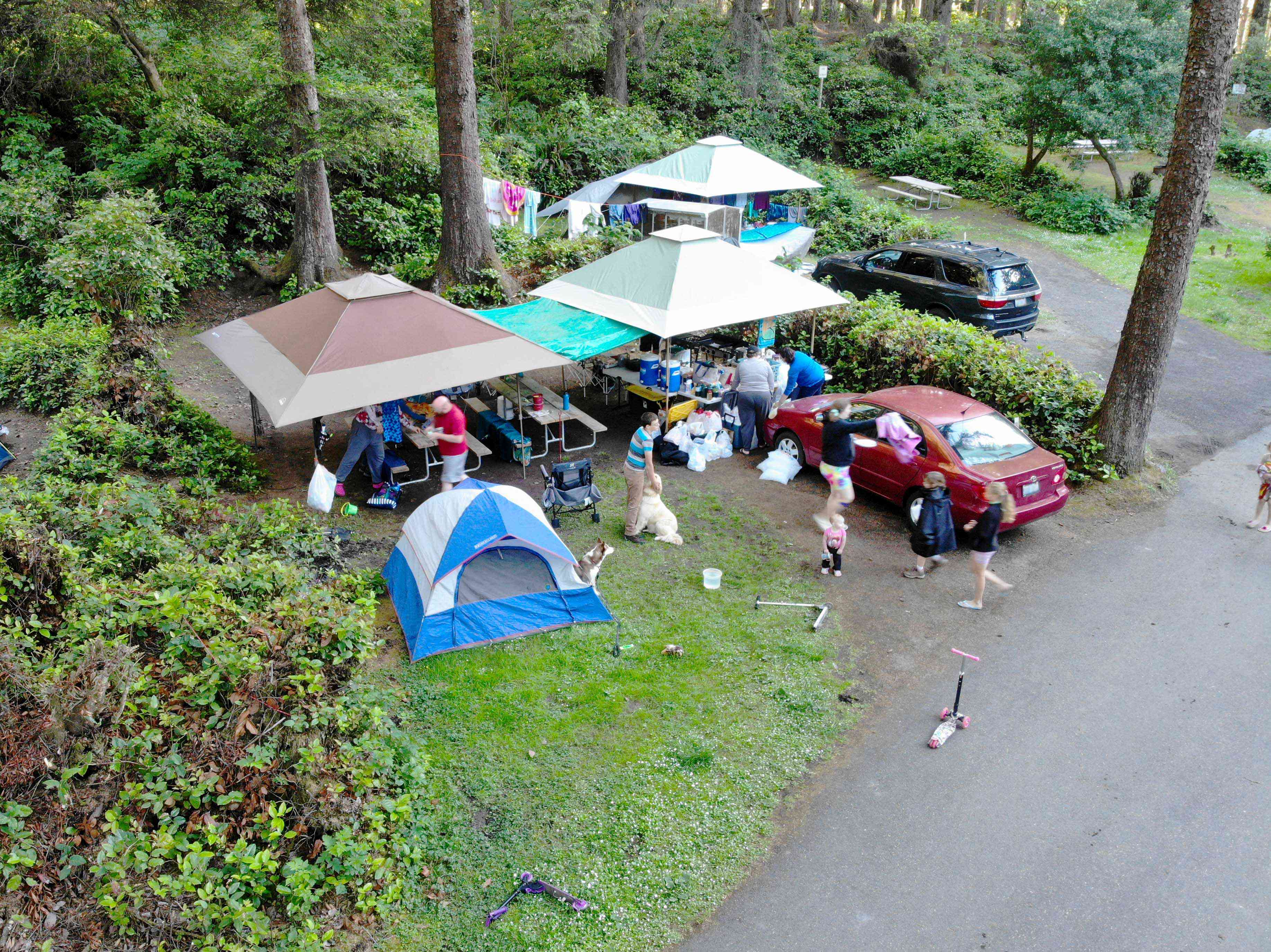 birds' eye view of big family camping, with tent and dogs and kids playing on scooters