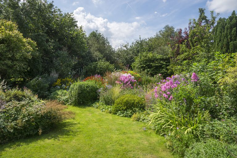 English country garden in August