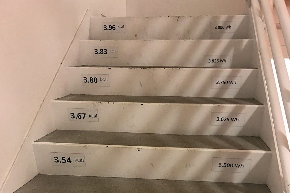 Stairs in the Terry Thomas Building