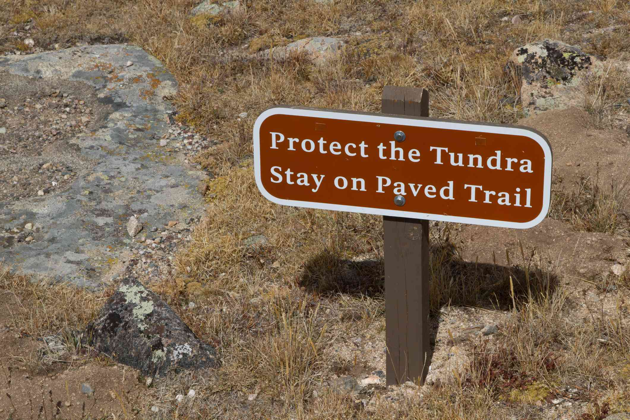 Protect the Tundra Sign