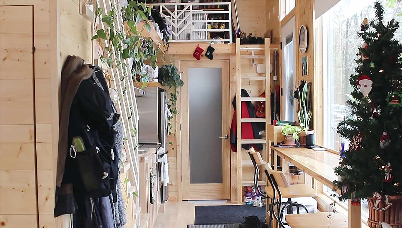 tiny house with houseplants secondary loft