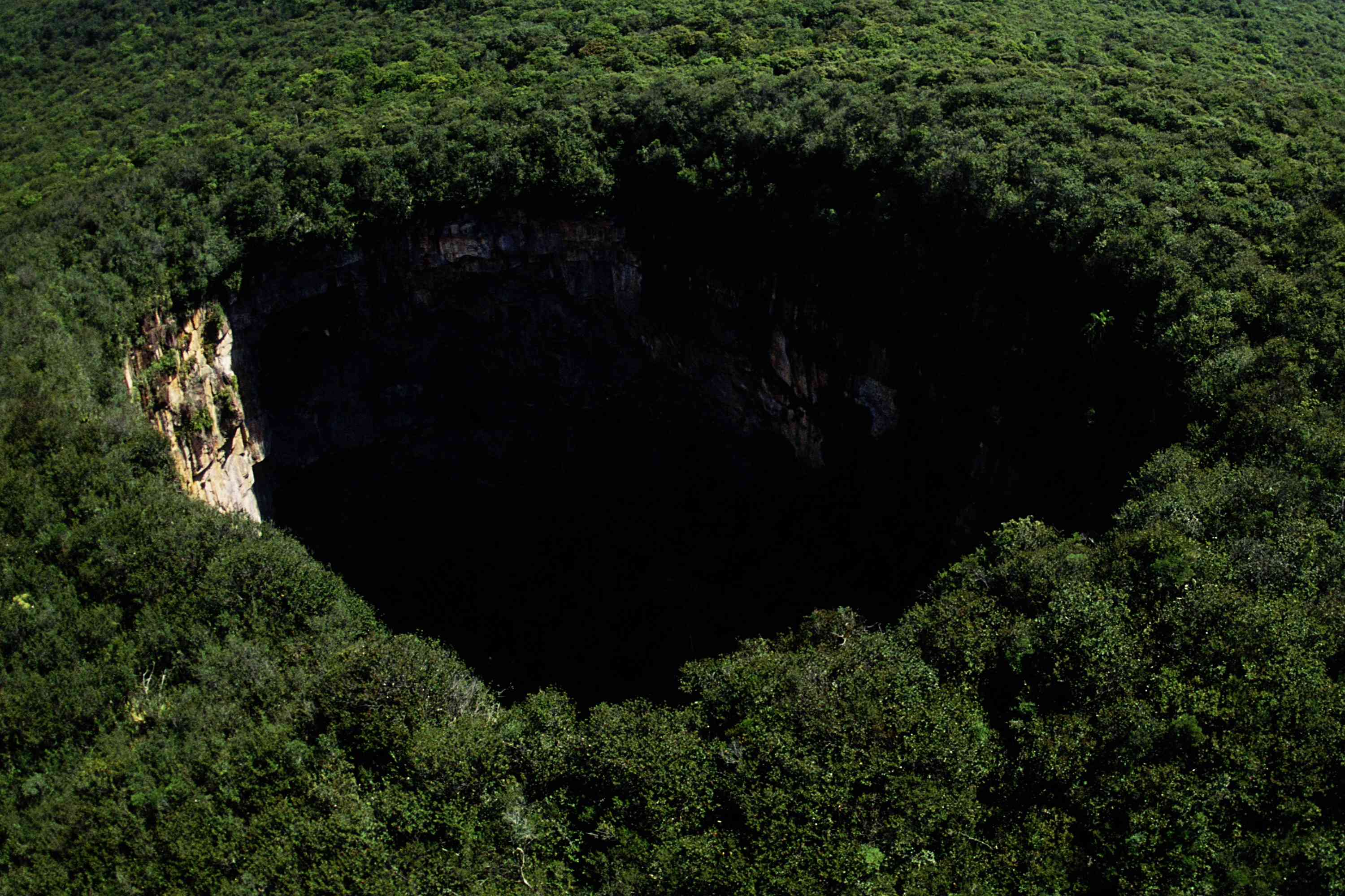 Sima Humboldt is surrounded by a thick forest in remote southwest Venezuela