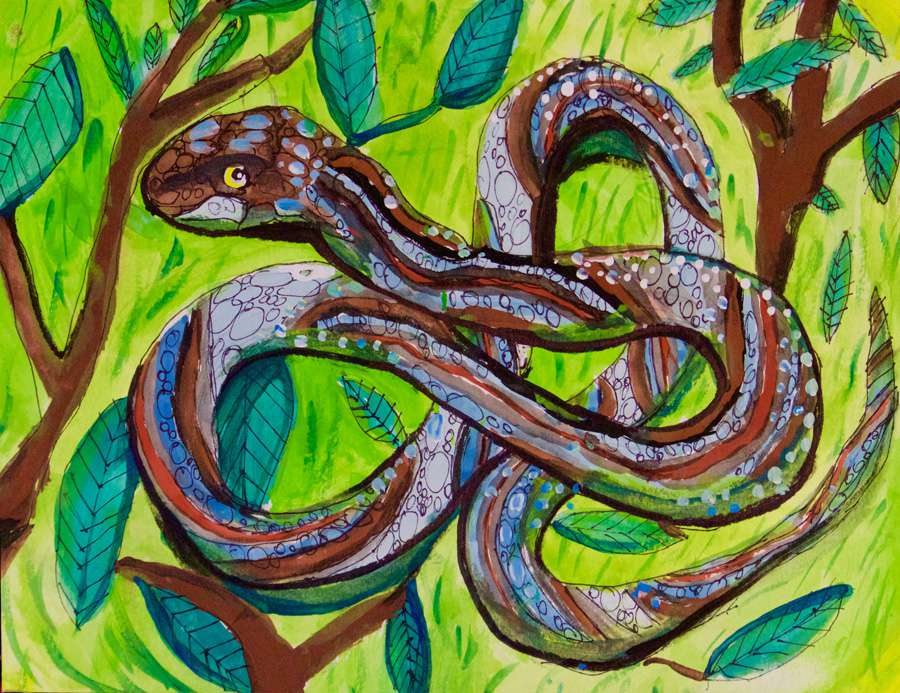 A watercolor painting of a San Francisco garter snake