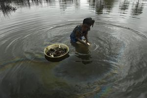 Shell Oil Spill Pollutes Water In Nigeria