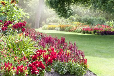 A nicely landscaped garden