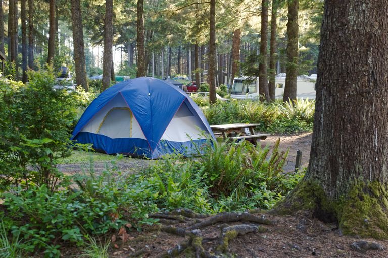 blue and white camping tent near picnic table in heavily forested campground