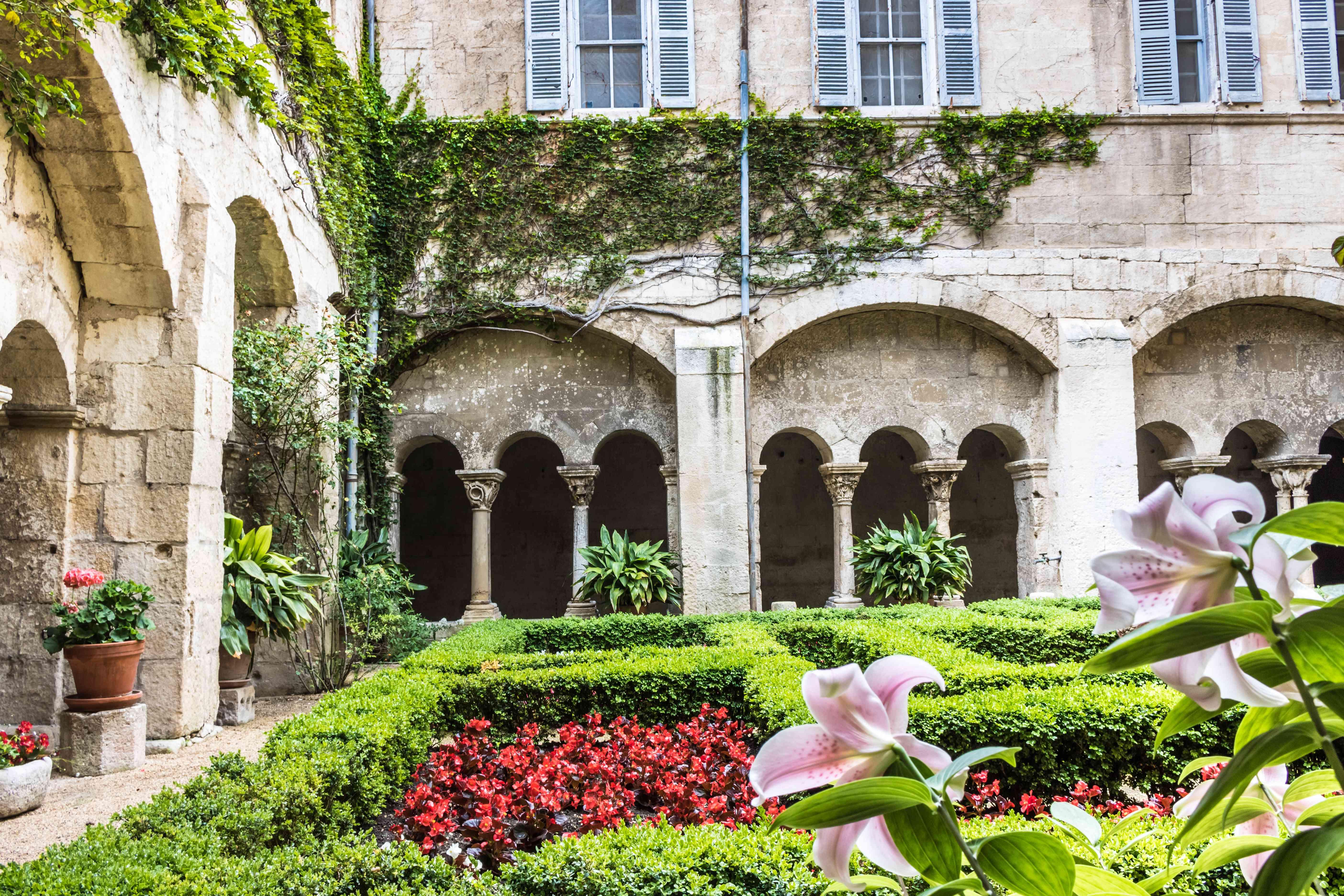 garden in the psychiatric center at Monastery Saint-Paul-de Mausole, France