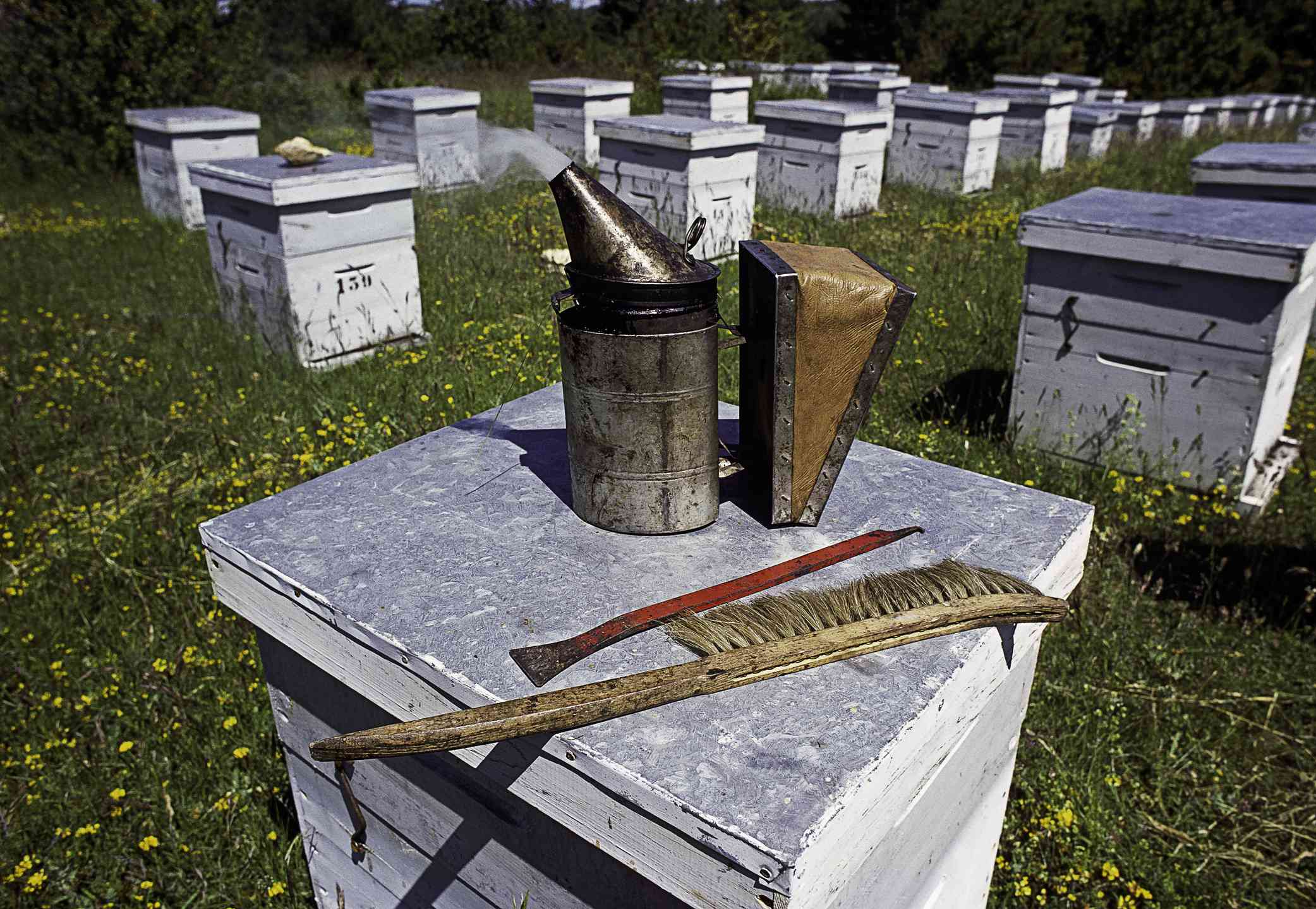 Smoker, bee brush, hive tool, bee keeping tools