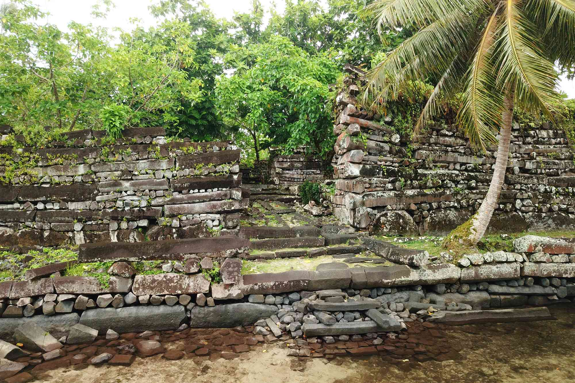 Nan Madol stone canal covered in tropical vegetation