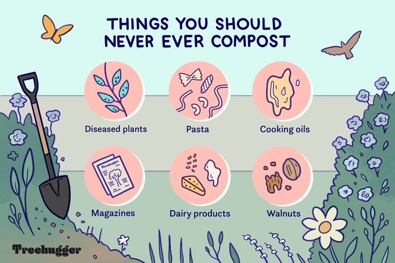 things to never compost