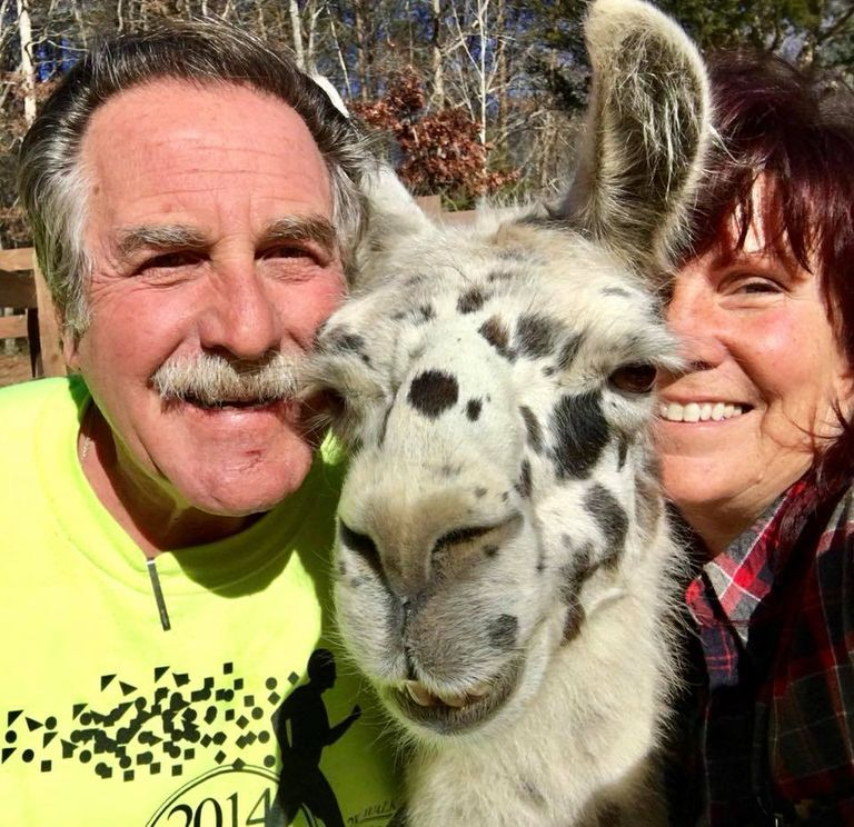 Una pareja de jubilados abre su granja (y sus corazones) a los animales con necesidades especiales