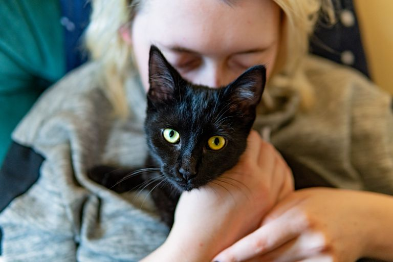 blonde woman kisses black cat with yellow eyes