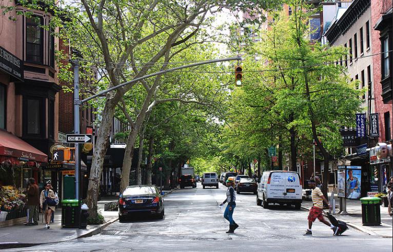 Cada árbol de la calle en NYC, mapeado