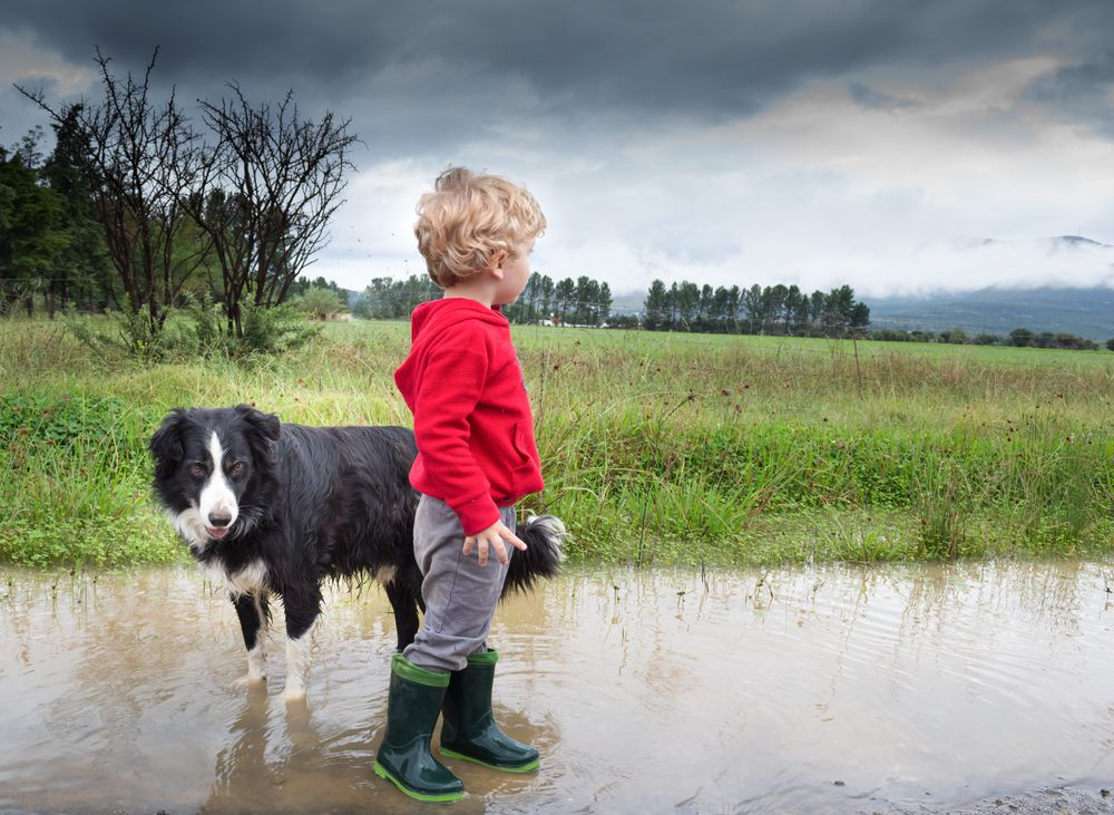 little boy and his dog after a rain