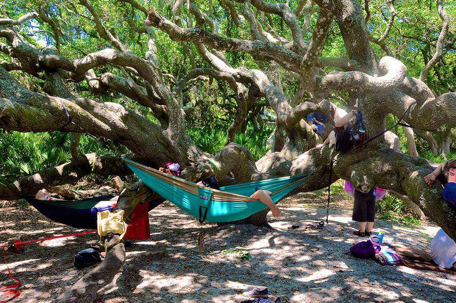 Cumberland Island: Lounging in hammocks under the live oaks