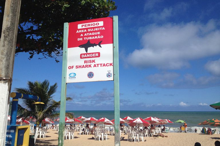 shark attack sign in Recife, Brazil