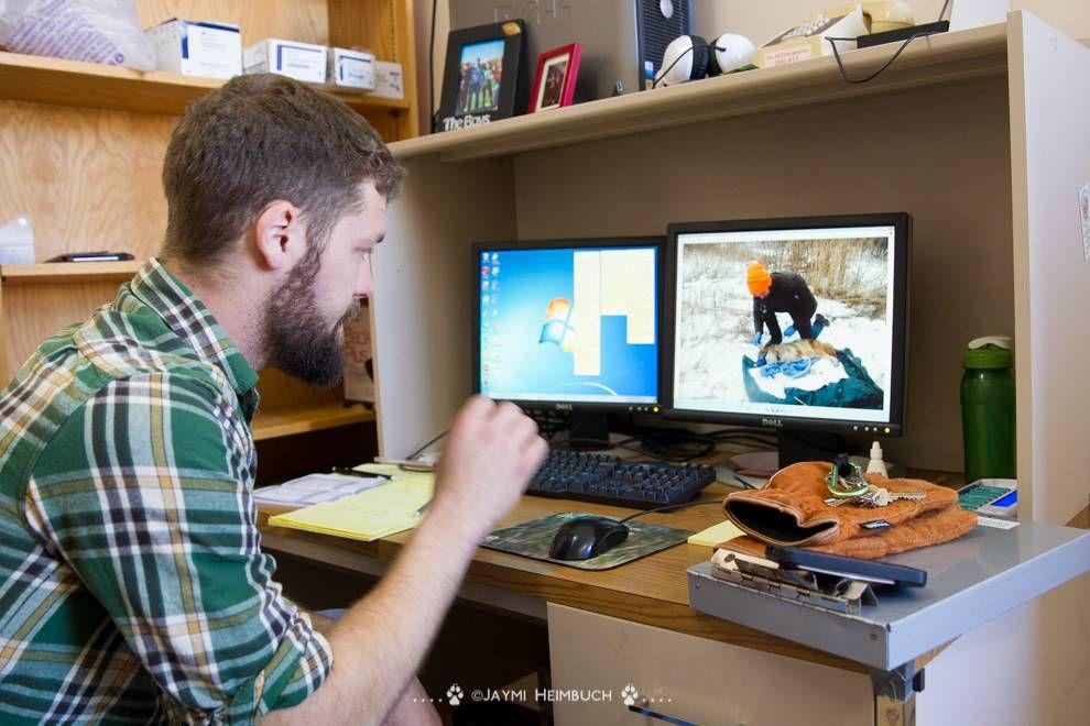 coyote researcher at desk