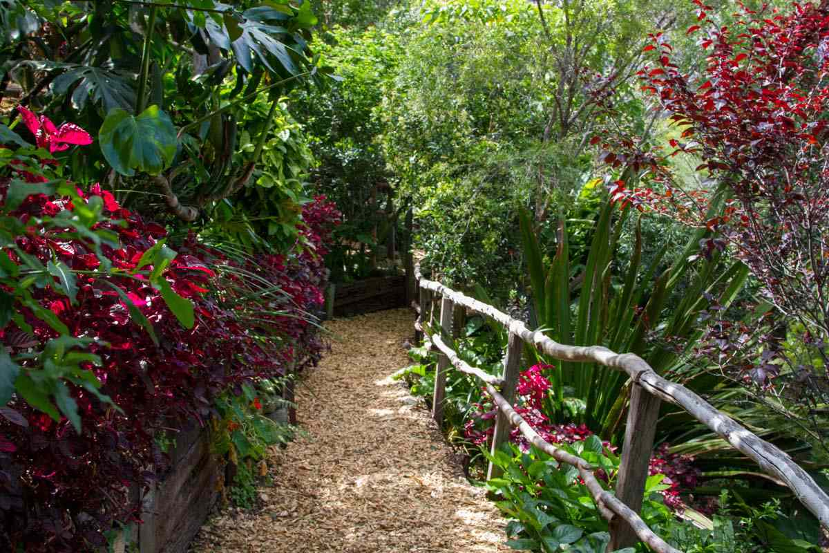 natural walking path leading into Wendy's Secret Garden with a rustic handrail made of branches surrounded by tall, lush vegetation with burgundy, green, and red plants on both sides of the path