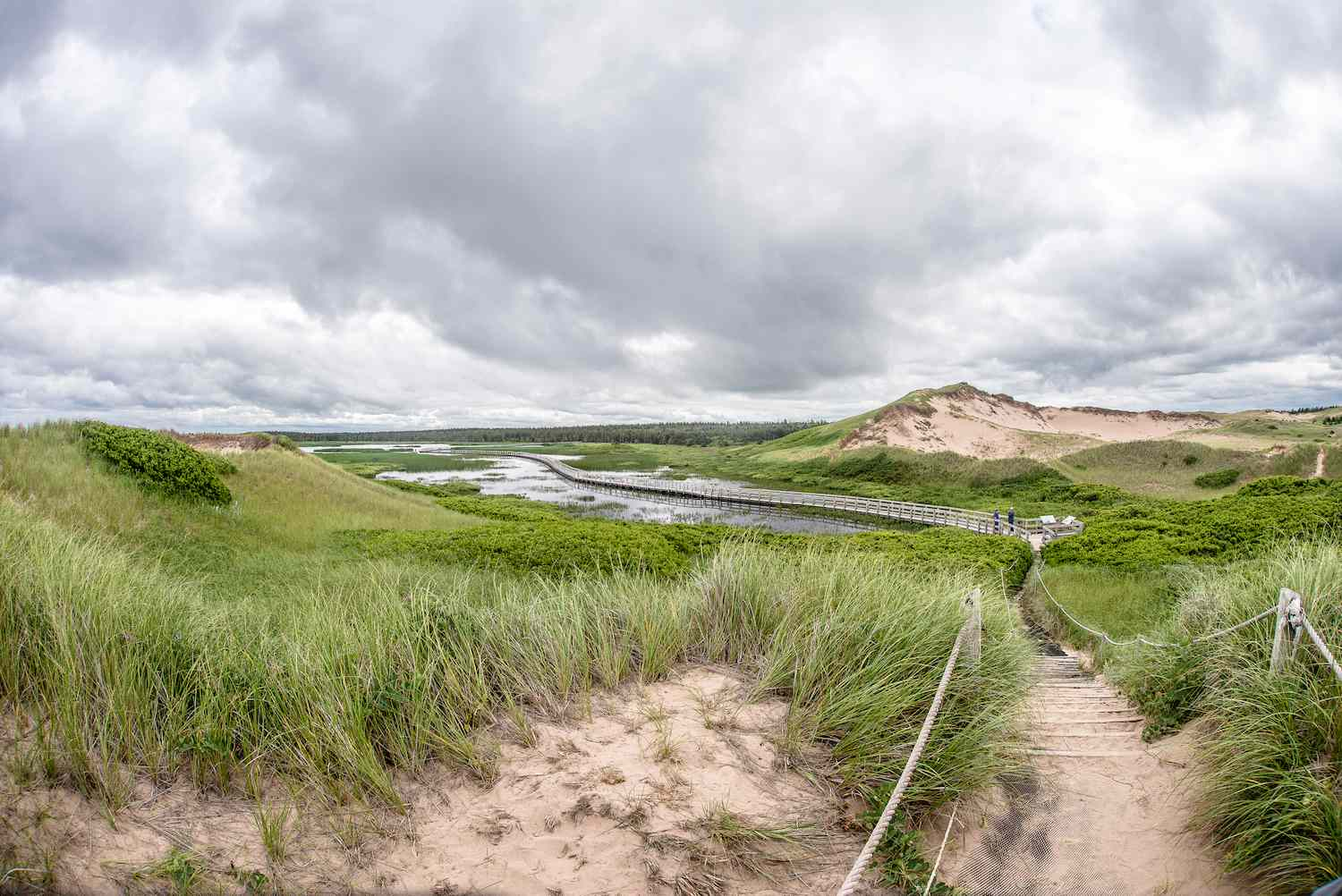 Grass and sand meet the water on a cloudy day at Prince Edward Island National Park