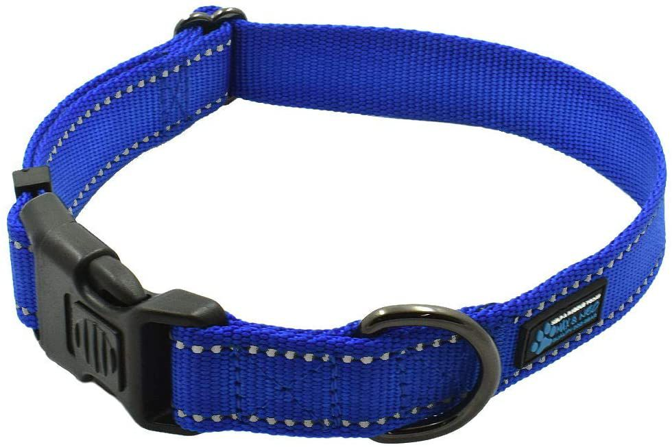 Max and Neo The NEO Dog Collar