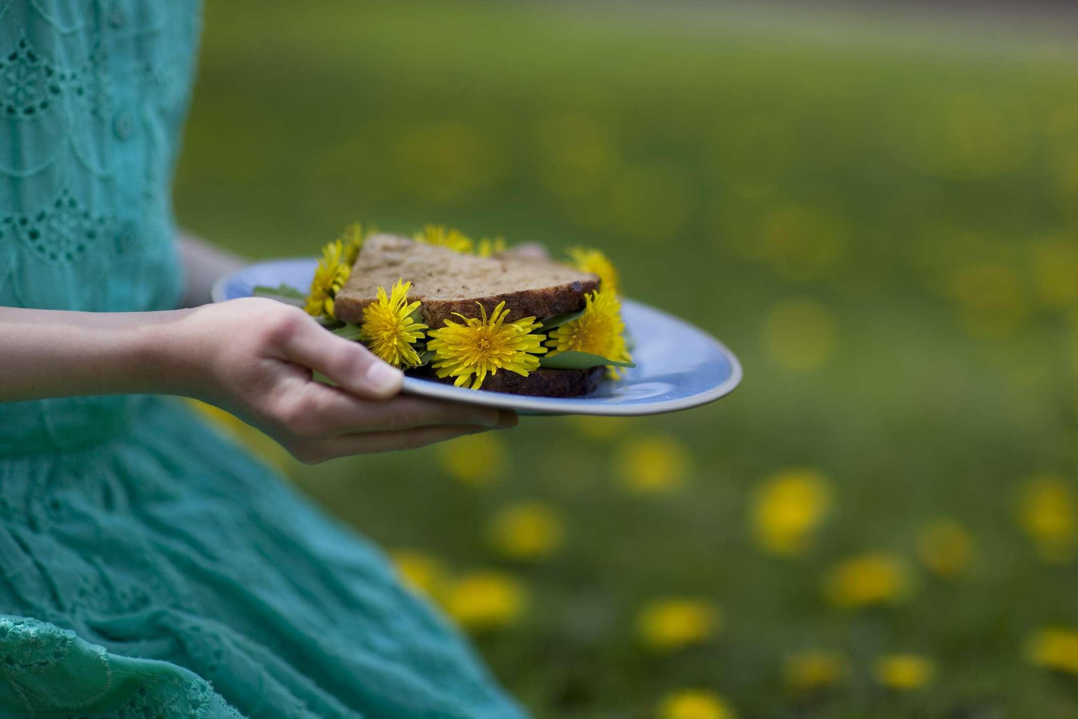 Girl's hands holding dandelion sandwich on a plate