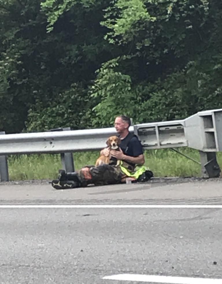 Un jefe de bomberos consuela a un perro que se niega a dejar el lado de su dueño atrapado