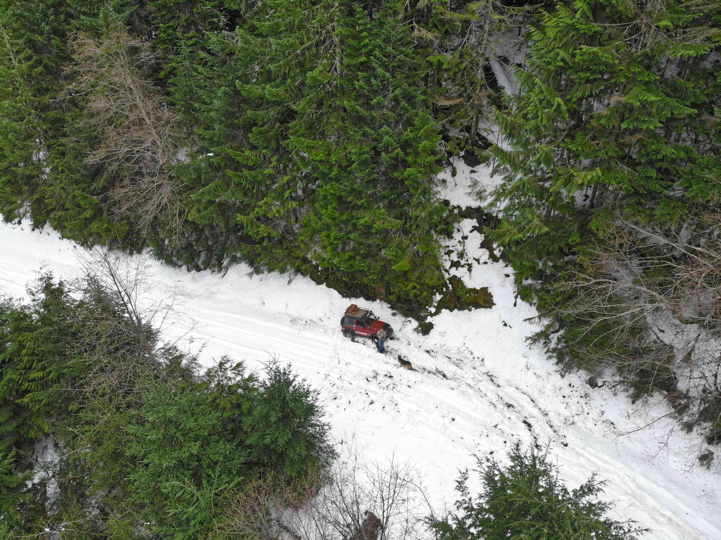 drone shot of red jeep in snowy woods