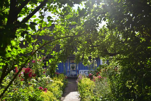 Germany, Zingst, garden and house