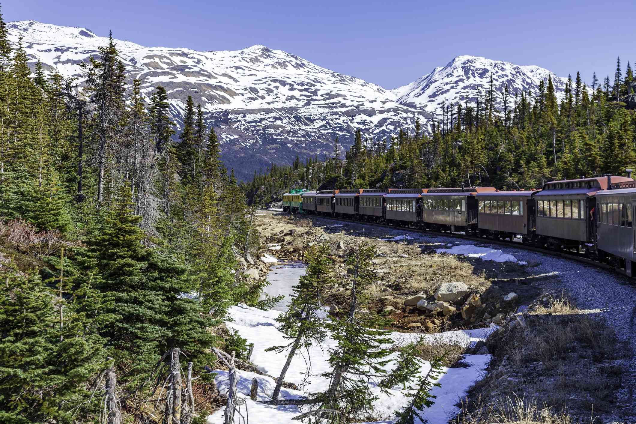 A passenger train travels through a landscape of pine trees and snow-capped mountains