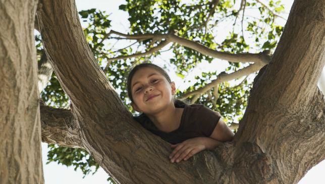 Por qué es importante la educación al aire libre para niños