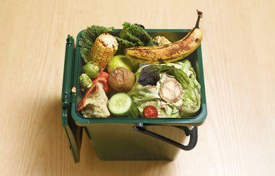Compost machine