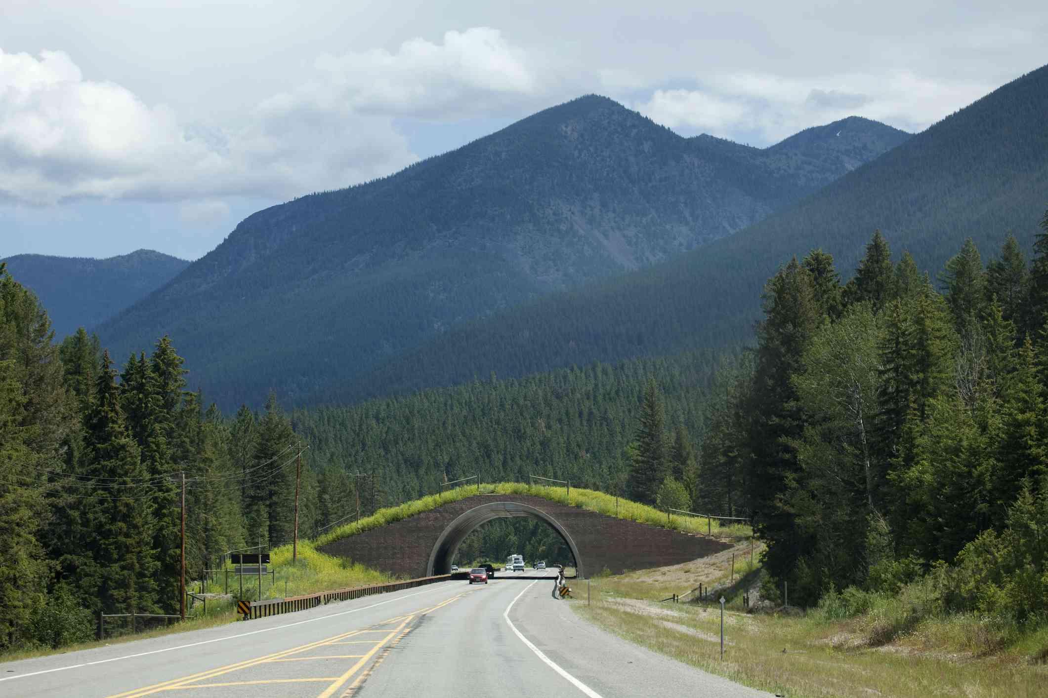 Montana Highway 93 wildlife bridge on Salish-Kootenai Reservation