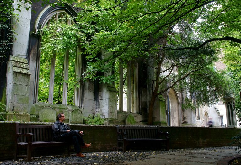 A man sitting on a bench under a huge tree
