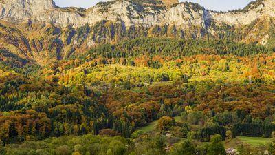 Autumn Colors In French Alps, Haute-Savoie