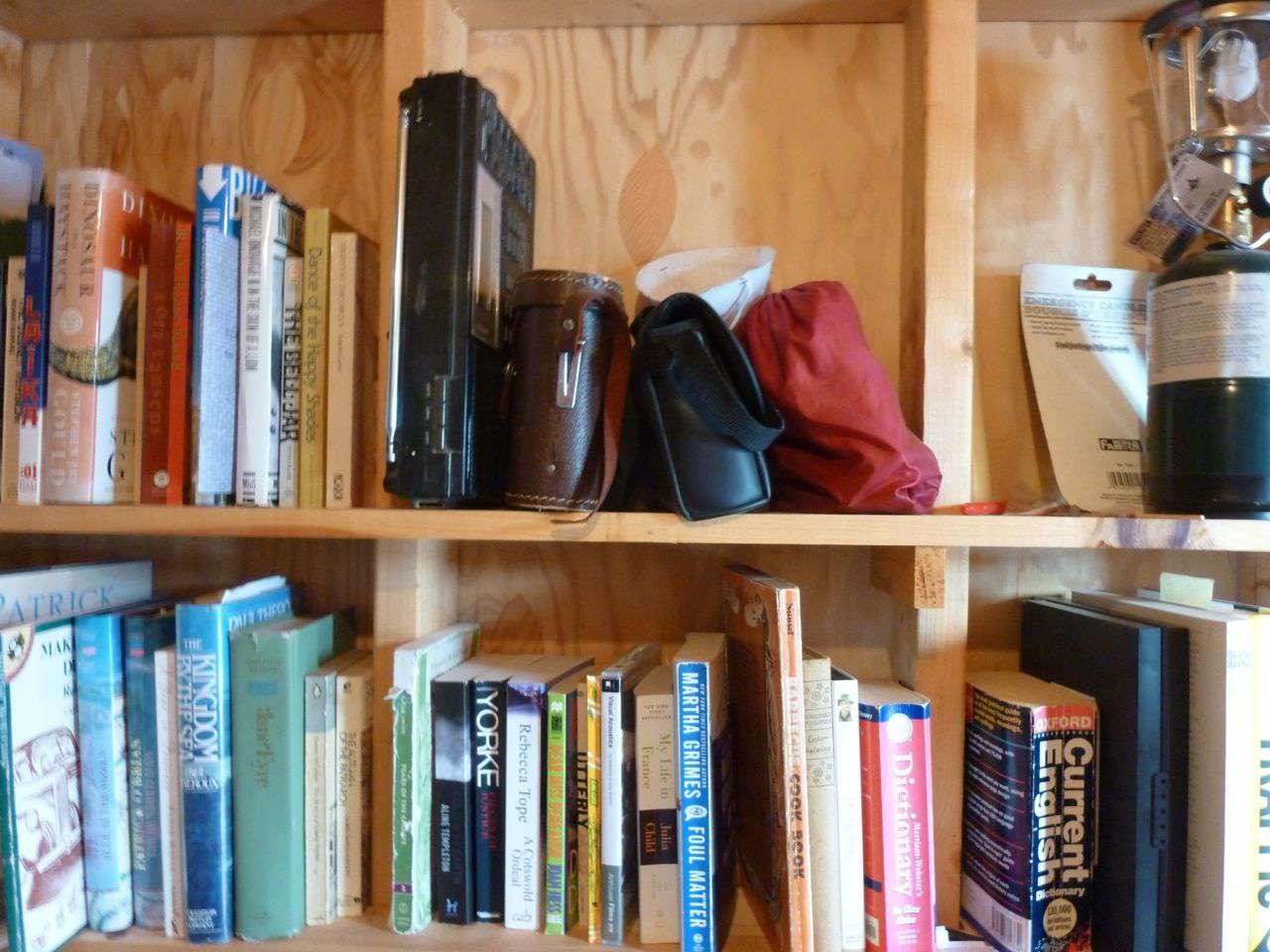 Bookshelves with books on them