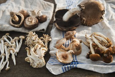 Foraged mushrooms laid out on a cloth on a wooden table